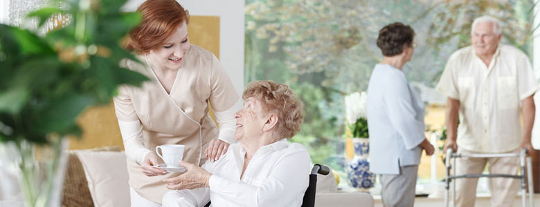 Nursing Home Industry
